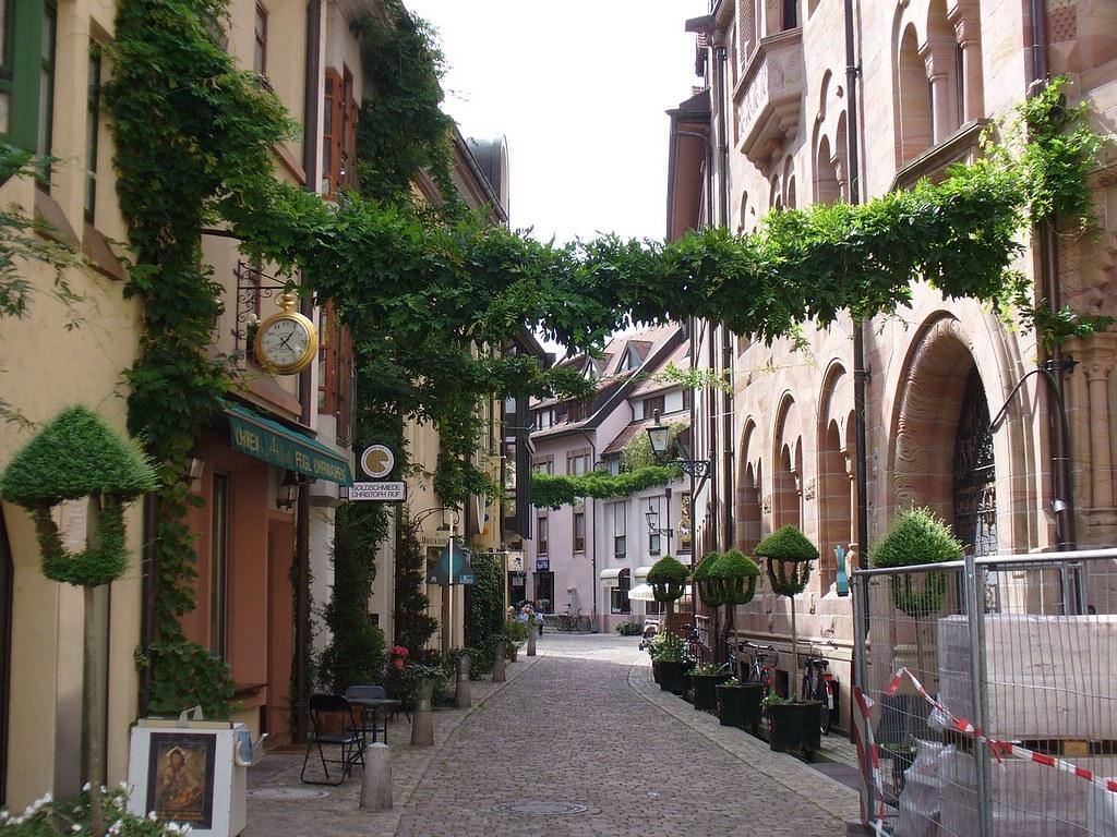 App Entwicklung Freiburg