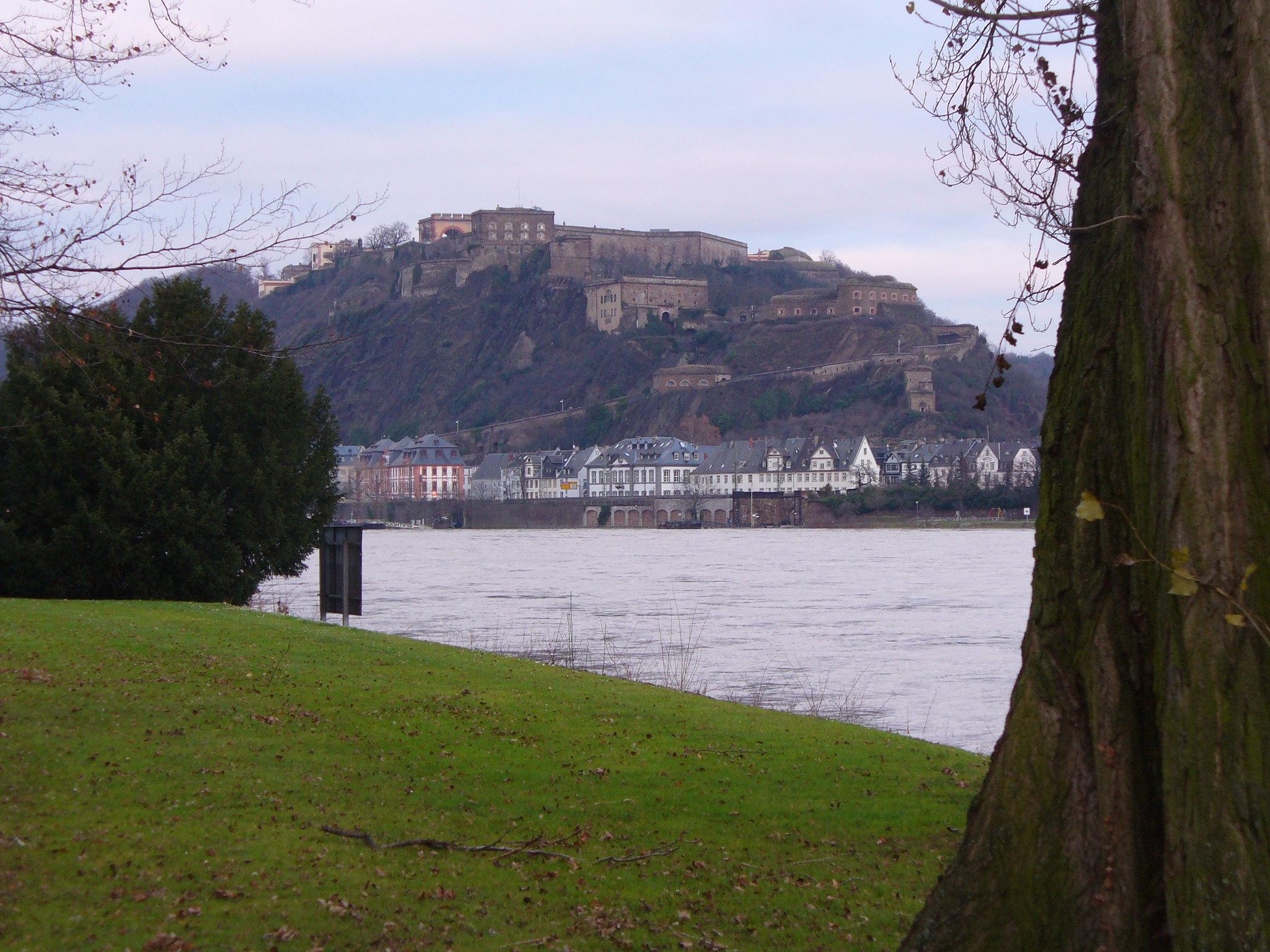 Webentwicklung Koblenz